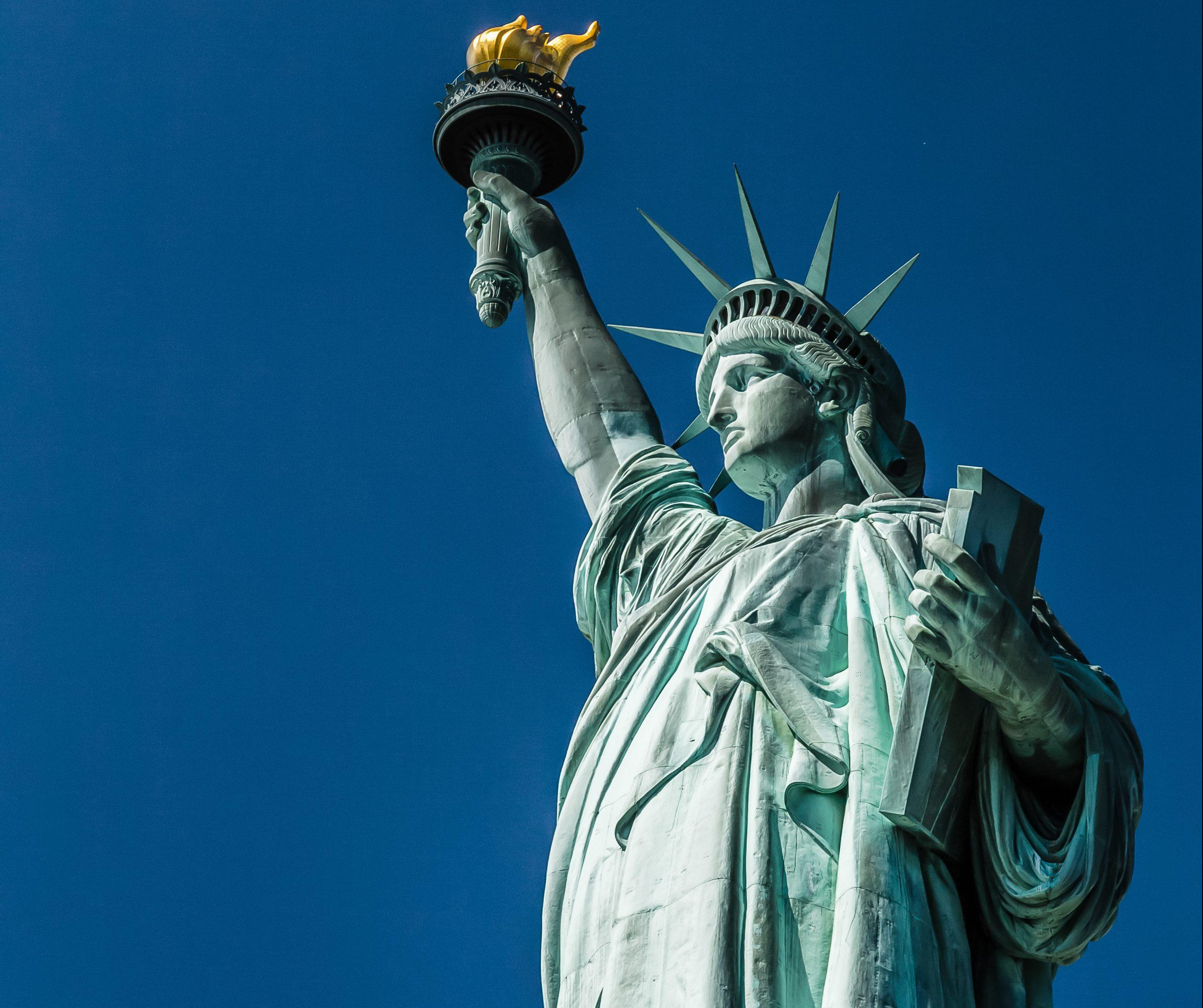 statue of liberty nonprofit